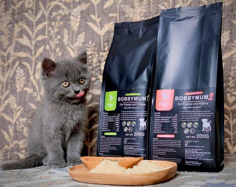 Nên cho mèo ăn gì? Thức ăn cho mèo con sơ sinh, mèo 1 và 2 tháng tuổi