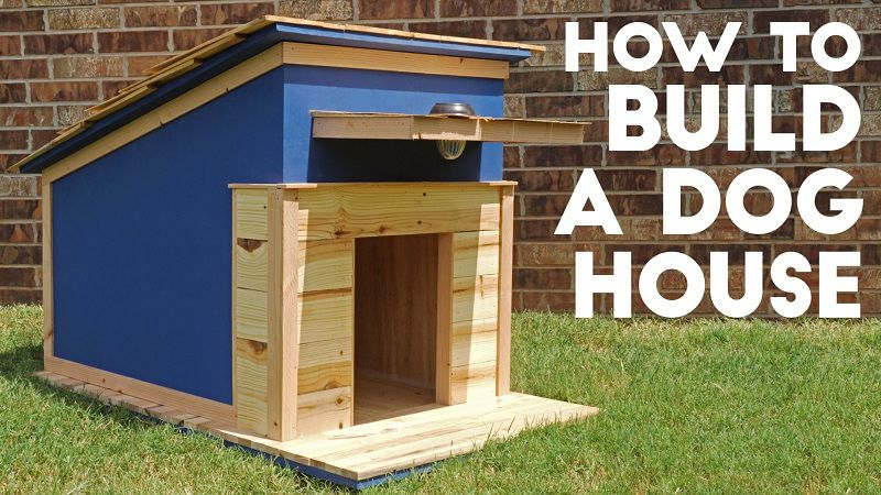 Cách làm chuồng chó bằng gỗ. Hướng dẫn tự làm nhà cho chó - TK