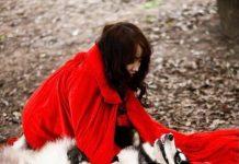 để mua được một chú chó Alaskan không phải là điều dễ dàng