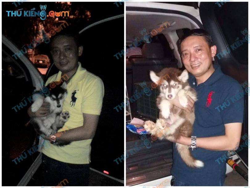 Nghệ sĩ Hài Chiến Thắng cũng đã đón 2 bé chó Alaskan của Thú kiểng – 2015