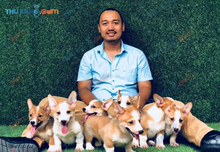 những chú chó alabai khổng lồ - A.Mạnh- Hưng Yên