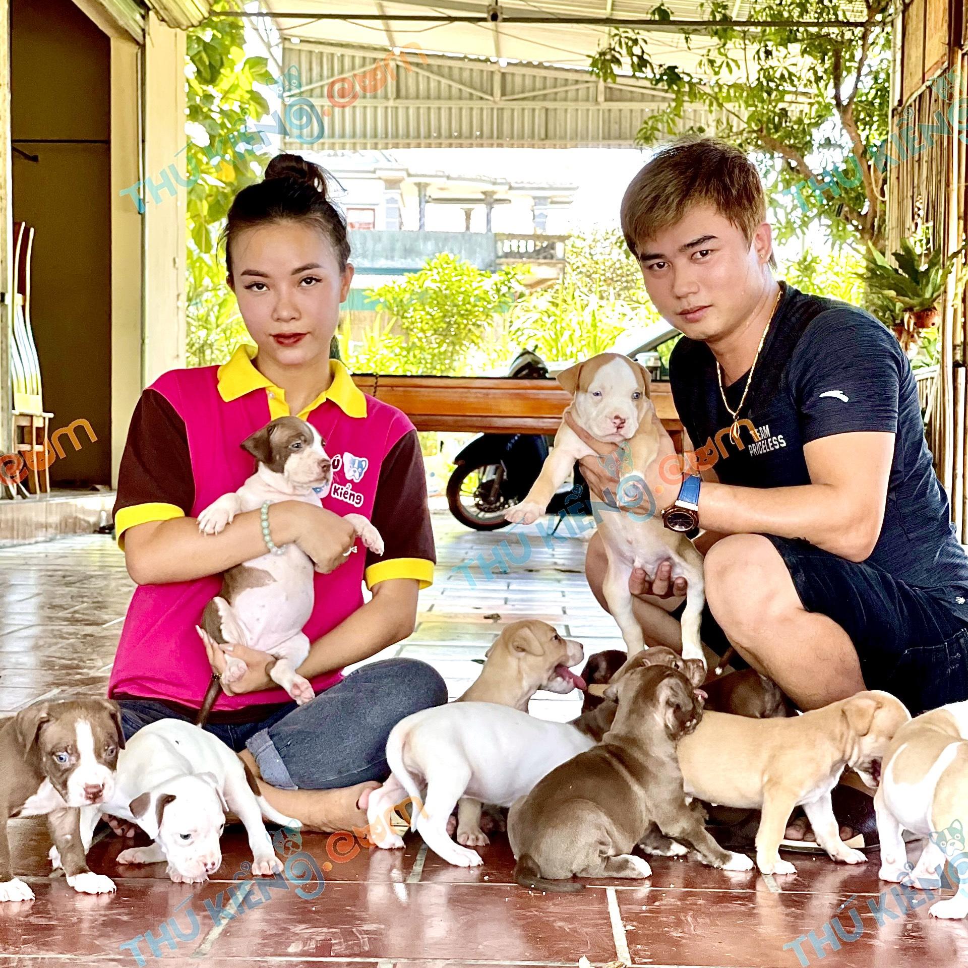 hợp tác nuôi sinh sản và kinh doanh chó mèo