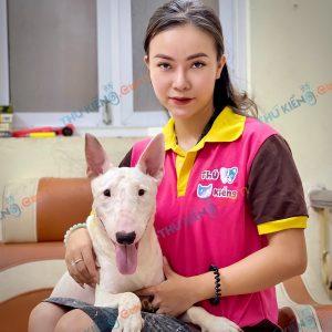 giong-cho-bull-terrier-cho-suc-bo-40-ngay-tuoi-xuat-chuong-thang-7-2021-1