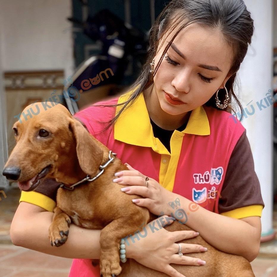 dáchhund( lạp xưởng)