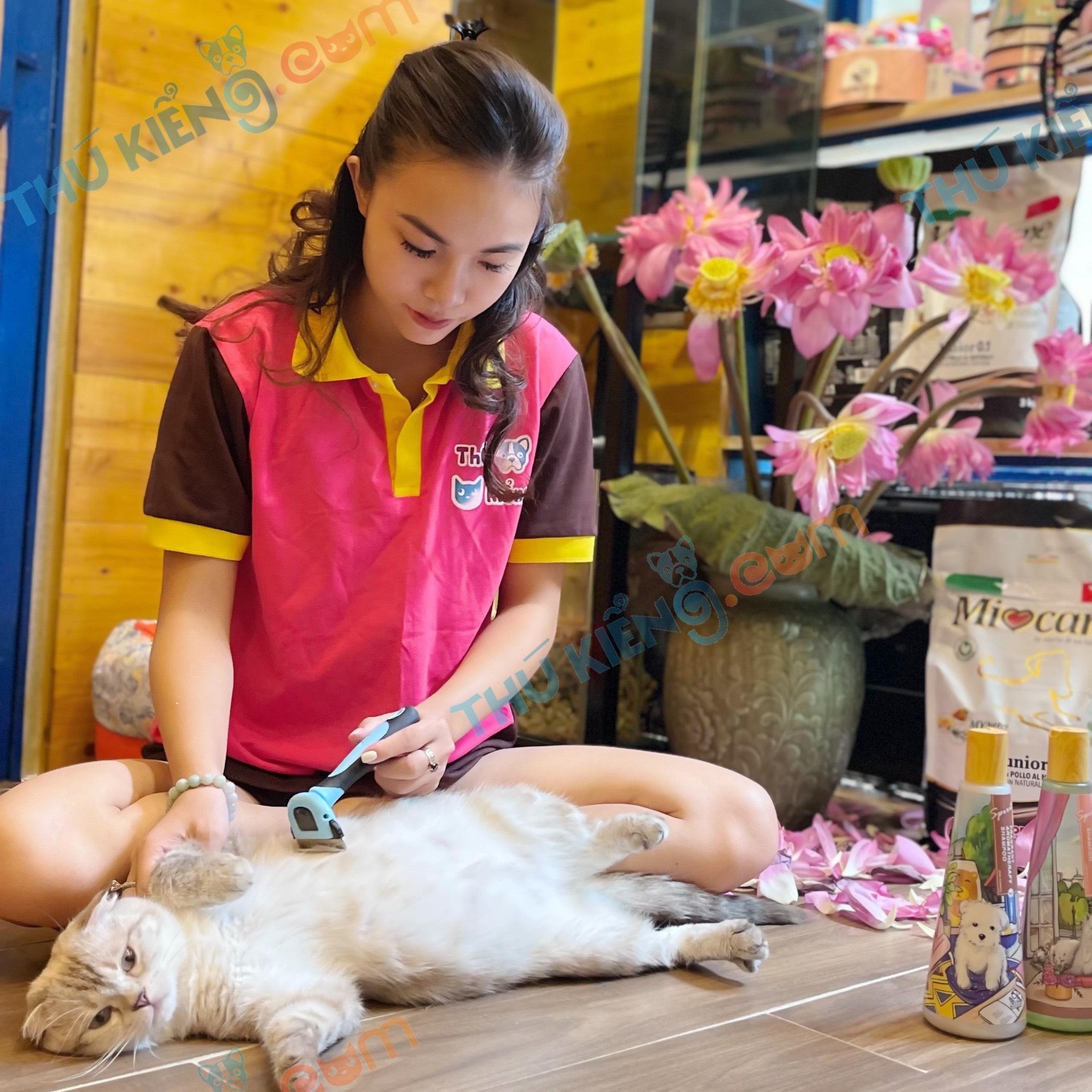 spa chăm sóc thú cưng